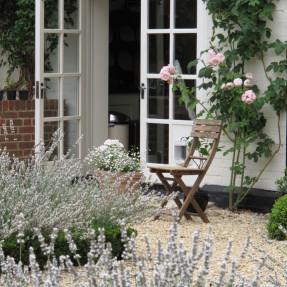 Box hedging around the Lavender planting