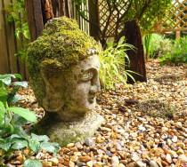 Buddha, Gravel and calm garden